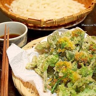 山菜の天ぷら*こごみ・タラの芽