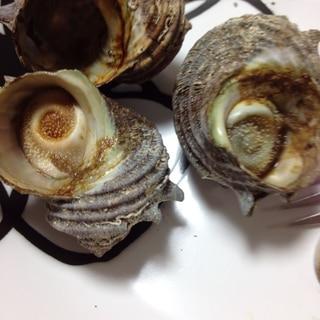 魚焼きグリルで、さざえのつぼ焼き