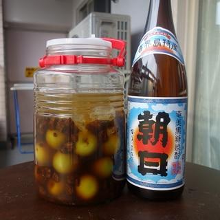 [梅酒]  黒糖焼酎と沖縄産黒糖で作る本格黒糖梅酒