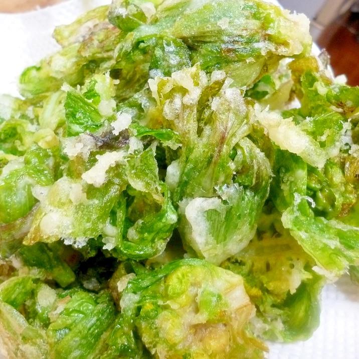 天ぷら ふきのとう