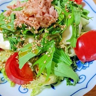 簡単サラダ★ツナと豆腐の胡麻ドレサラダ