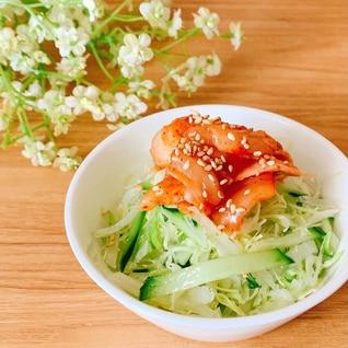おつまみに✧˖°キムチ野菜サラダෆ˚*
