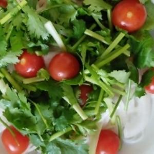 【簡単】ヘルシー!エビと春雨のタイ風サラダ