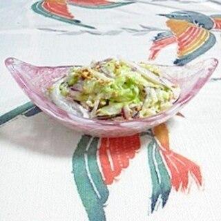 キャベツと赤玉葱のマヨネーズサラダ