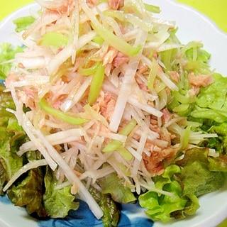 【中華ごま】隼人瓜と大根ツナのサラダ