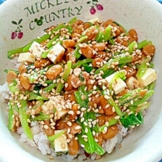 納豆の食べ方-小松菜&チーズ♪