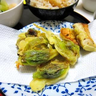 さっくさく、新緑ふきのとうの天ぷら
