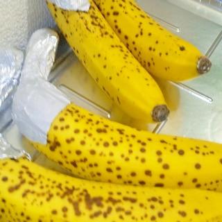 超完熟バナナで美味しくいただくバナナの保存方法