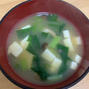 小松菜としめじと豆腐のお味噌汁