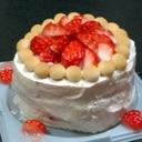 離乳食ケーキ