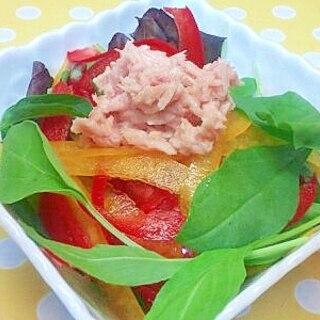 ベビーリーフ&ツナのサラダ