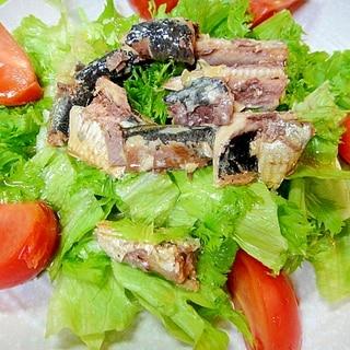 いわし缶とレタスわさび菜のサラダ