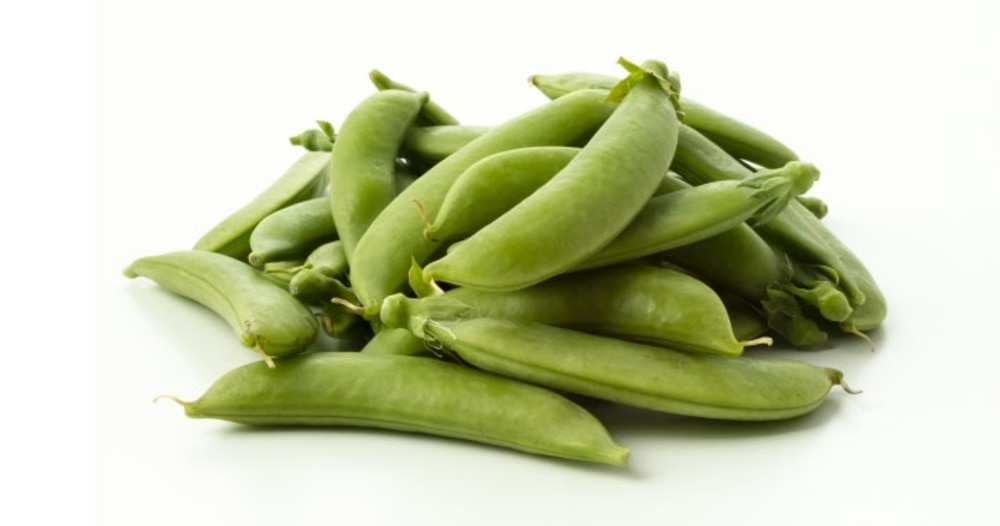 初夏に旬を迎える豆(2)「スナップえんどう」