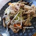 カット野菜と豚こま切れの塩胡椒炒め₊✼̥୭*ˈ