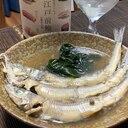 日本酒にご飯に、にぎすの山椒煮