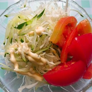 キャベツときゅうりとトマトのサラダ