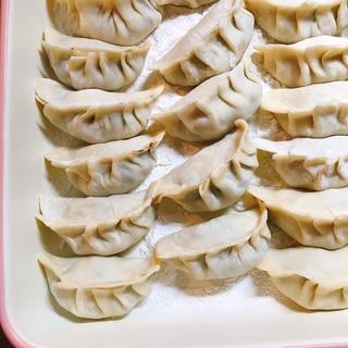 フェンネル餃子