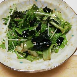 簡単!レタス水菜ワカメのチョレギサラダ