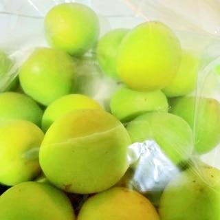 フリーザーバッグで作るスパイス入り梅シロップ
