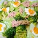 ブロッコリーとツナゆで卵レタスのサラダ