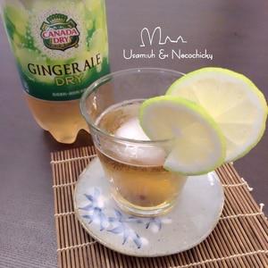 【カナダドライ】ジンジャエールと梅酒レモンカクテル