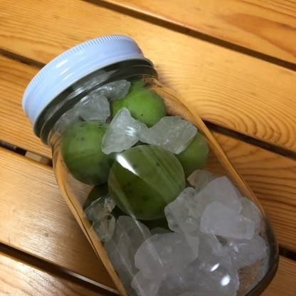 子供用に。梅酒に引き続き梅シロップも参考にさせていただきました。わかりやすいレシピありがとうございました。