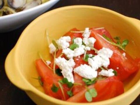 完熟トマトとカッテージチーズのサラダ