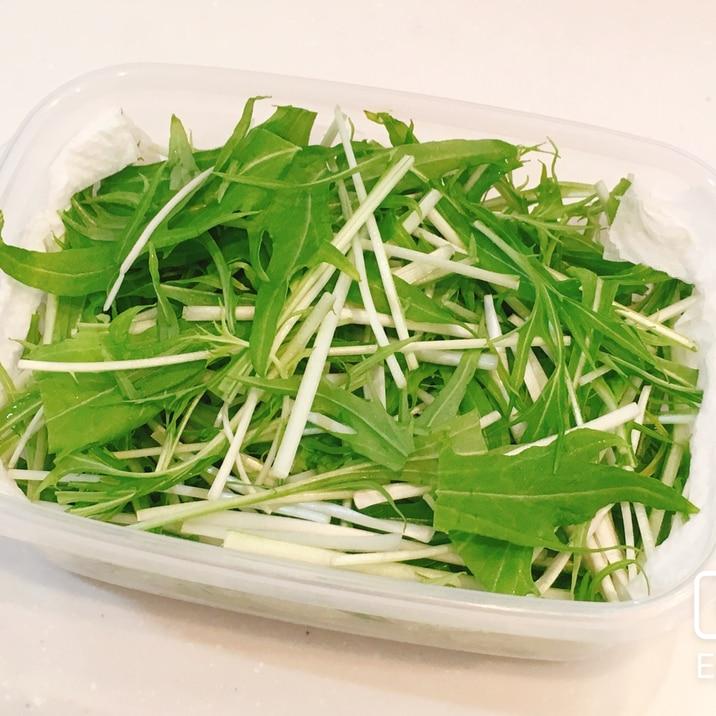 長持ち!水菜の冷蔵、冷凍保存方法