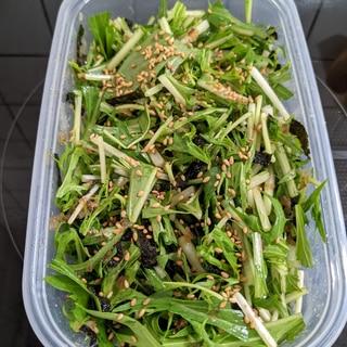 作り置き!水菜あっさりサラダ
